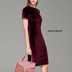 🎉HP🎉 RED WINE VELVET DRESS